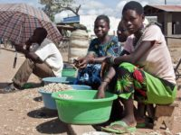 «Quatrième révolution industrielle»: Opportunité pour l'Afrique ou catastrophe imminente?